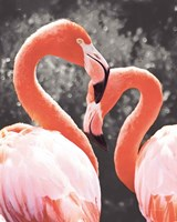 Flamingo II on BW Fine Art Print