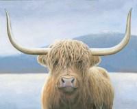Highland Cow v2 Fine Art Print