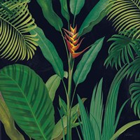 Dramatic Tropical II Fine Art Print
