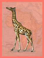 African Animals on Coral II Fine Art Print