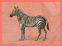 African Animals on Coral IV Fine Art Print