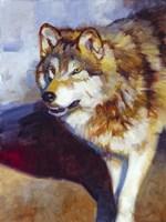 Wolf Study II Fine Art Print