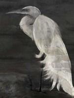 Textured Egret I Fine Art Print