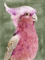 Palm Springs Parrot I Fine Art Print