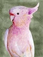 Palm Springs Parrot II Fine Art Print