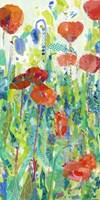 Stately Red Poppies I Fine Art Print