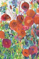 Vivid Poppy Collage I Fine Art Print