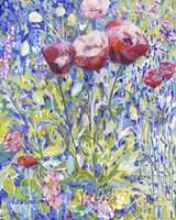 Three Poppies in Garden Fine Art Print