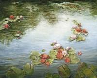 Tranquil Reflections I Fine Art Print