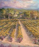 Tranquil Wine Country II Fine Art Print