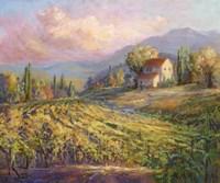 Tranquil Wine Country III Fine Art Print