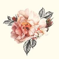 The Light of Day Rose I Fine Art Print