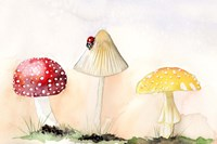 Faerie Mushrooms I Fine Art Print