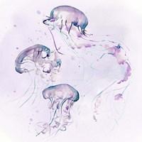 Underwater Halcyon II Fine Art Print