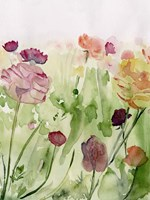 Among the Watercolor Wildflowers II Fine Art Print