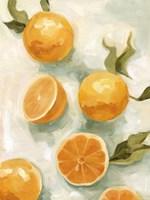 Fresh Citrus V Fine Art Print