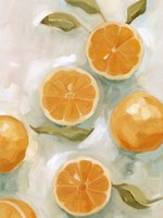 Fresh Citrus VI Fine Art Print