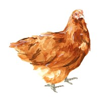 Wild Chicken I Fine Art Print