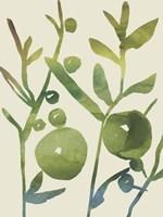 Spring Sprig I Fine Art Print