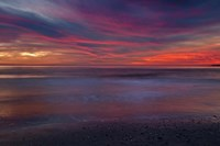 Purple-Colored Sunrise On Ocean Shore, Cape May NJ Fine Art Print