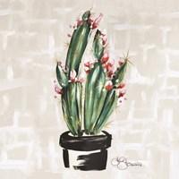 Blooming Cactus Fine Art Print