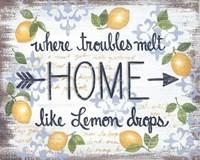 Lemon Home Fine Art Print