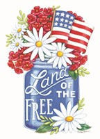 Land of the Free Blue Mason Jar Fine Art Print