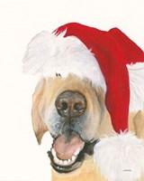 Santa Ruff Fine Art Print