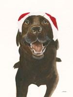 Santa Oscar Fine Art Print