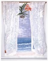 Open Curtains Fine Art Print