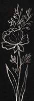 Black Floral III Crop Fine Art Print
