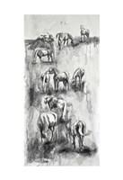 Equine Life 4 Fine Art Print