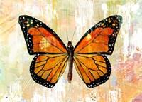 Monarch No. 1.0 Fine Art Print
