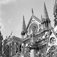 Shining Star of Paris - Notre Dame Fine Art Print