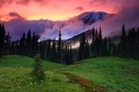 Mt. Rainier, WA Fine Art Print