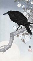 Crow at Full Moon, 1900-1930 Fine Art Print