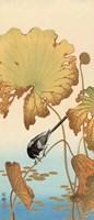 Japanese Wagtail on Lotus Plant, 1925-1936 Fine Art Print