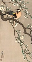 Songbirds on Cherry Branch, 1900-1910 Fine Art Print