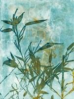 Leafy Bamboo Fine Art Print