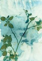 Leaves and Sky Fine Art Print
