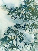 Wallpaper Fine Art Print