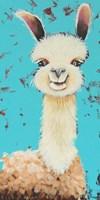 Llama Sue Fine Art Print