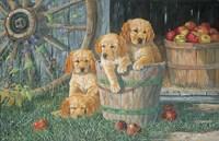 Bucket Seat Fine Art Print