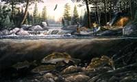 Fishing The Falls Fine Art Print