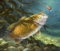 Deep Water Prowler Fine Art Print