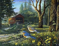Sleepy Hollow Bluebirds Fine Art Print