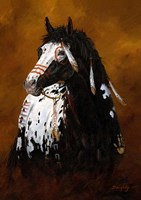 Sioux War Pony Fine Art Print