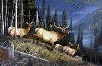 Eagle Mountain Fine Art Print