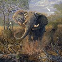 Angry Tusker Fine Art Print