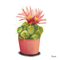 Cactus Flowers I Fine Art Print
